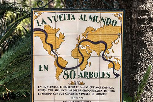 Eine Reise um die Welt: 80 Bäume