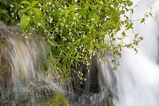 ...vorbei an einem Wasserfall