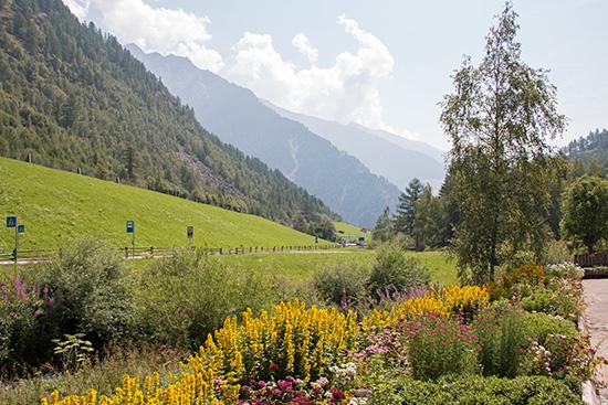 ...mit schönem Bauerngarten